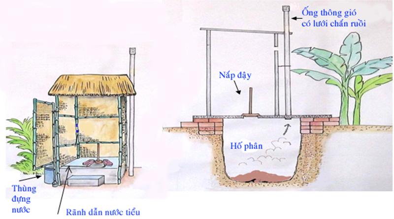 Mẫu nhà vệ sinh công cộng tiêu đào có ống thông hơi