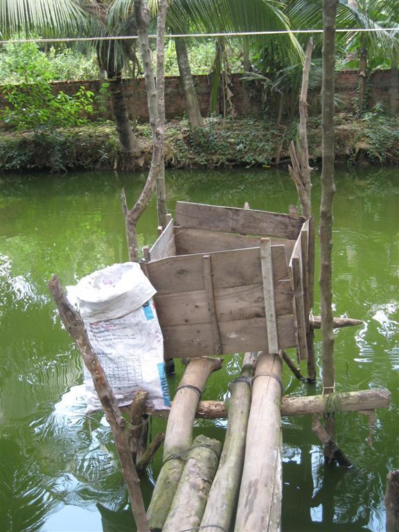 Mẫu nhà vệ sinh trên ao cá