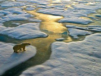 Biến đổi khí hậu toàn cầu là gì? Hiệp định Paris về biến đổi khí hậu