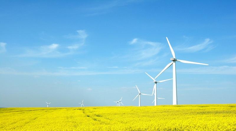 Một số biện pháp khắc phục biến đổi khí hậu