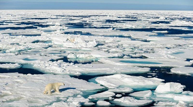 Những biểu hiện của biến đổi khí hậu toàn cầu - Nước biển dâng