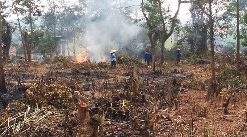 Hậu quả của biến đổi môi trường làm tăng nguy cơ cháy rừng