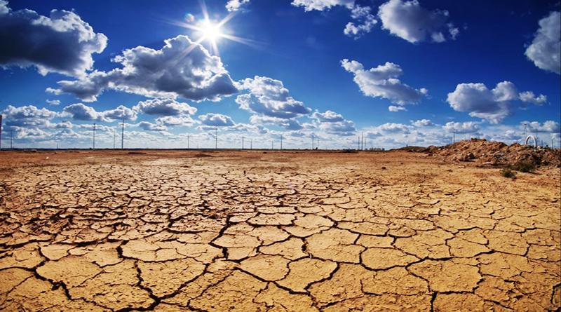 Hậu quả của biến đổi môi trường làm thay đổi hệ sinh thái